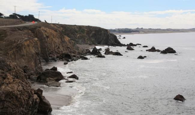 Sonoma County Beaches Dog Friendly