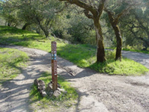 annadel-canyonwr-trail-junction