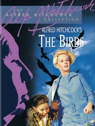 the-birds-rental