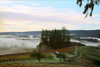 Winemakers relish in the Sonoma Coast