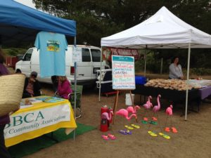 Bodega Bay Farmer's Market @ Behind the Community Center