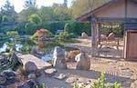 osmosis_fall_pond