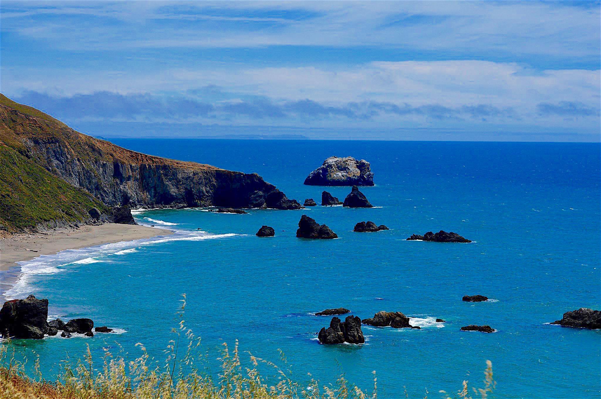 Dog Friendly Beaches In Sonoma County Ca