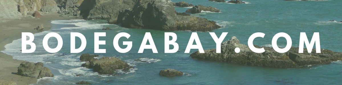 The Official Bodega Bay Area Website