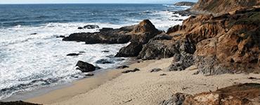 Bodega Bay Beaches