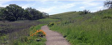 Crane Creek Regional Park