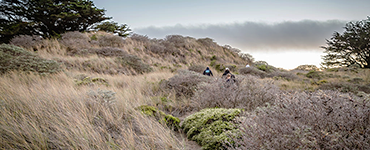 Pomo Canyon And Willow Creek Environmental Campgrounds At Sonoma Coast State Beach