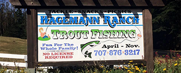 Hagemann Ranch Trout Farm
