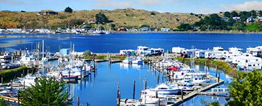 Porto Bodega Marina